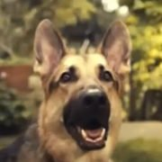 Bayer Be Lungworm Aware Campaign Commercial