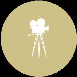 Film School for Dogs