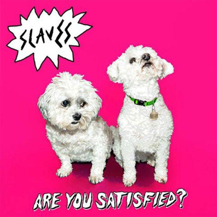 Hugger Bichon and Ellie poodle Slaves Album Cover