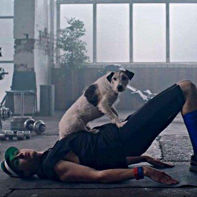 Lucozade Dog Commercial