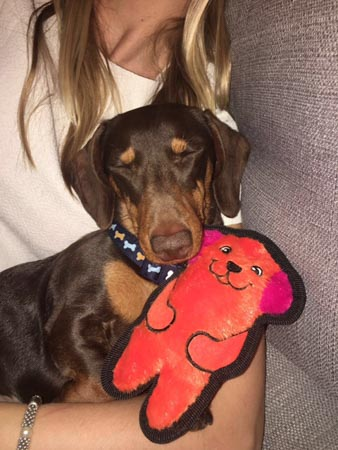 Cedric snoozes with teddy